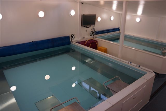 Double amd Single Pool from Above